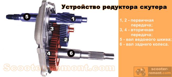 Устройство редуктора скутера